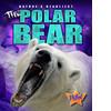 Cover: The Polar Bear