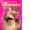 Cover: Aardvarks