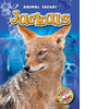 Cover: Jackals