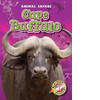 Cover: Cape Buffalo