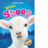 Cover: Baby Sheep