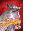 Cover: Nine-banded Armadillos