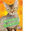 Cover: Devon Rexes