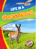 Cover: Life in a Grassland