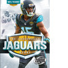 Cover: The Jacksonville Jaguars Story