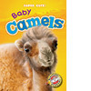 Cover: Baby Camels