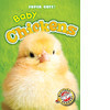 Cover: Baby Chickens