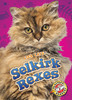 Cover: Selkirk Rexes