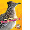 Cover: Roadrunners