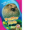 Cover: Puffer Fish