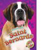 Cover: Saint Bernards