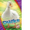 Cover: Ducks