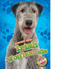 Cover: Irish Wolfhounds