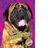 Cover: Mastiffs