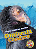 Cover: California Condors