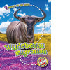 Cover: Wildebeest Migration