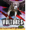 Cover: Vultures