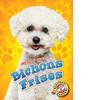 Cover: Bichons Frises