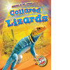 Cover: Collared Lizards