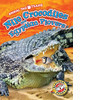 Cover: Nile Crocodiles and Egyptian Plovers