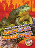 Cover: American Bullfrogs