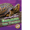 Cover: Common Box Turtles