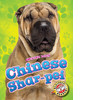 Cover: Chinese Shar-pei
