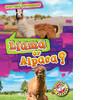 Cover: Llama or Alpaca?