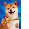 Cover: Shiba Inus