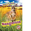 Cover: Kangaroos