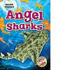 Cover: Angel Sharks