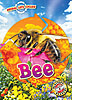Cover: Animal Life Cycles: Bee