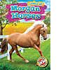 Cover: Morgan Horses