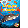 Cover: Lemon Sharks