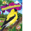 Cover: Goldfinches
