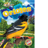 Cover: Orioles