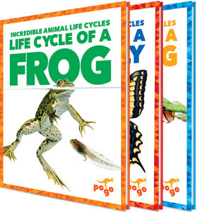 Cover: Incredible Animal Life Cycles