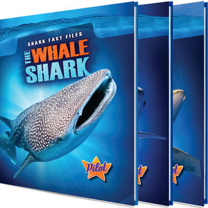 Cover: Shark Fact Files