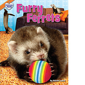 Cover: Furry Ferrets