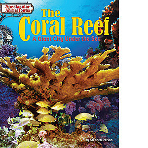 Cover: The Coral Reef