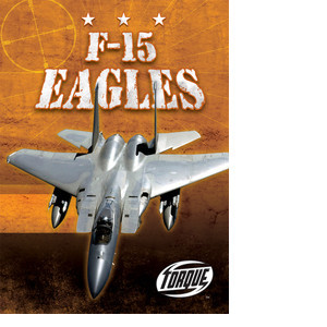 Cover: F-15 Eagles