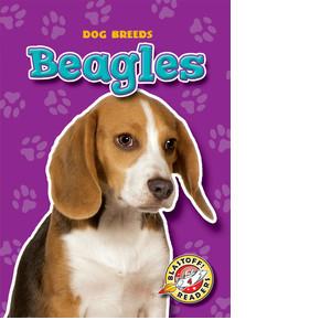 Cover: Beagles