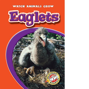 Cover: Eaglets