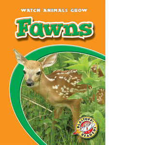 Cover: Fawns