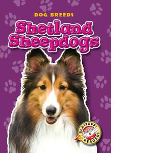 Cover: Shetland Sheepdogs