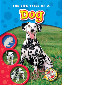 Cover: The Life Cycle of a Dog