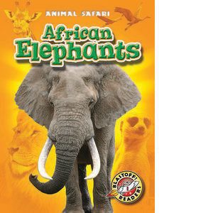 Cover: African Elephants