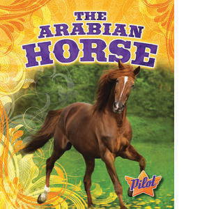 Cover: The Arabian Horse