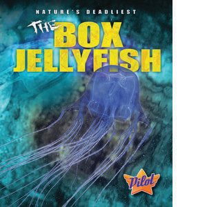 Cover: The Box Jellyfish