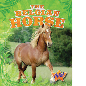 Cover: The Belgian Horse